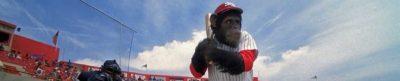 Ed - Baseball movie header